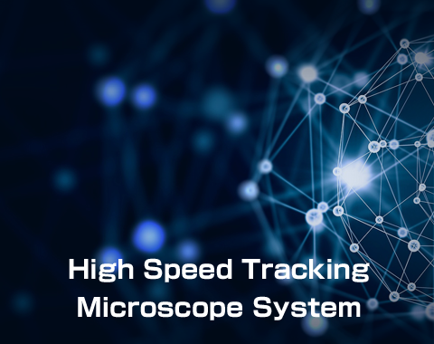 High Speed Inspection System