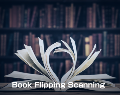 Book Flipping Scanning